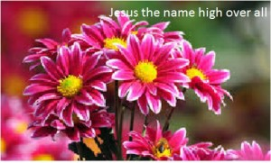 Jesus the name high over all